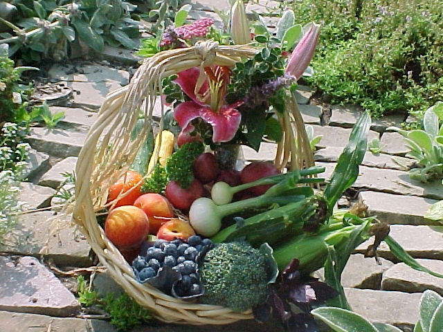 harvestbasket.jpg